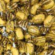 chocolate-eclairs-1kg